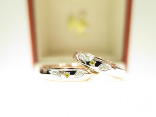 お客様の結婚指輪|IMG_5520