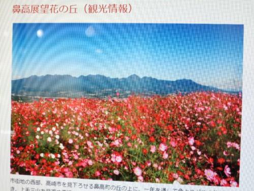 鼻高展望花の丘コスモス祭り|IMG_9358