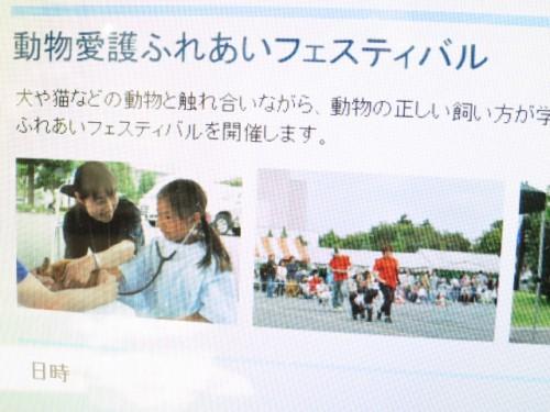 動物愛護ふれあいフェスティバル|IMG_9359