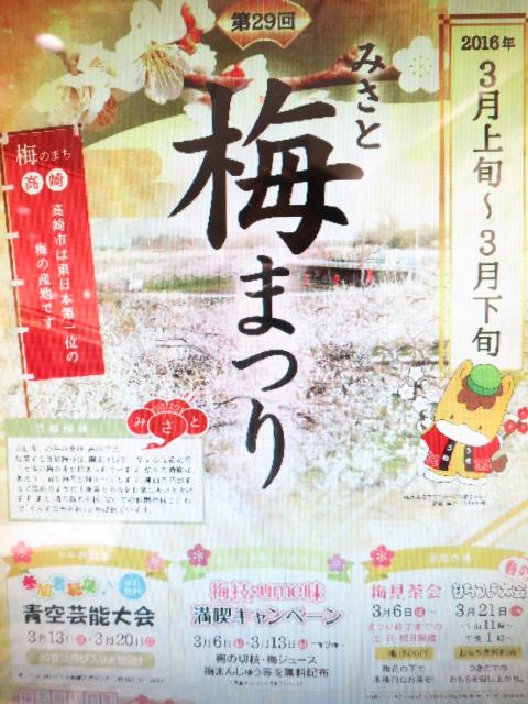 高崎市梅祭り|IMG_0962