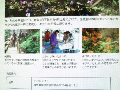 カタクリ咲いたまつり|IMG_1900