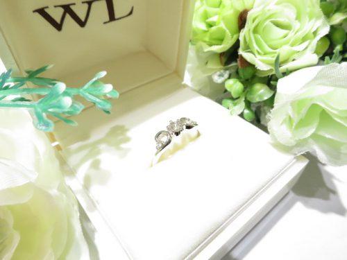 輪ファミリーの婚約指輪|IMG_7895