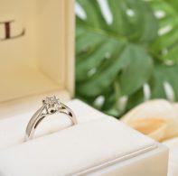 プロポーズ|DSC_6438