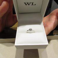 輪ファミリーの婚約指輪|IMG_1792